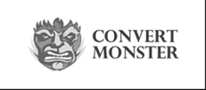 Курсы от Convert Monster (Комплект VIP)