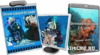 Обучение подводной фотографии (Видеоурок)